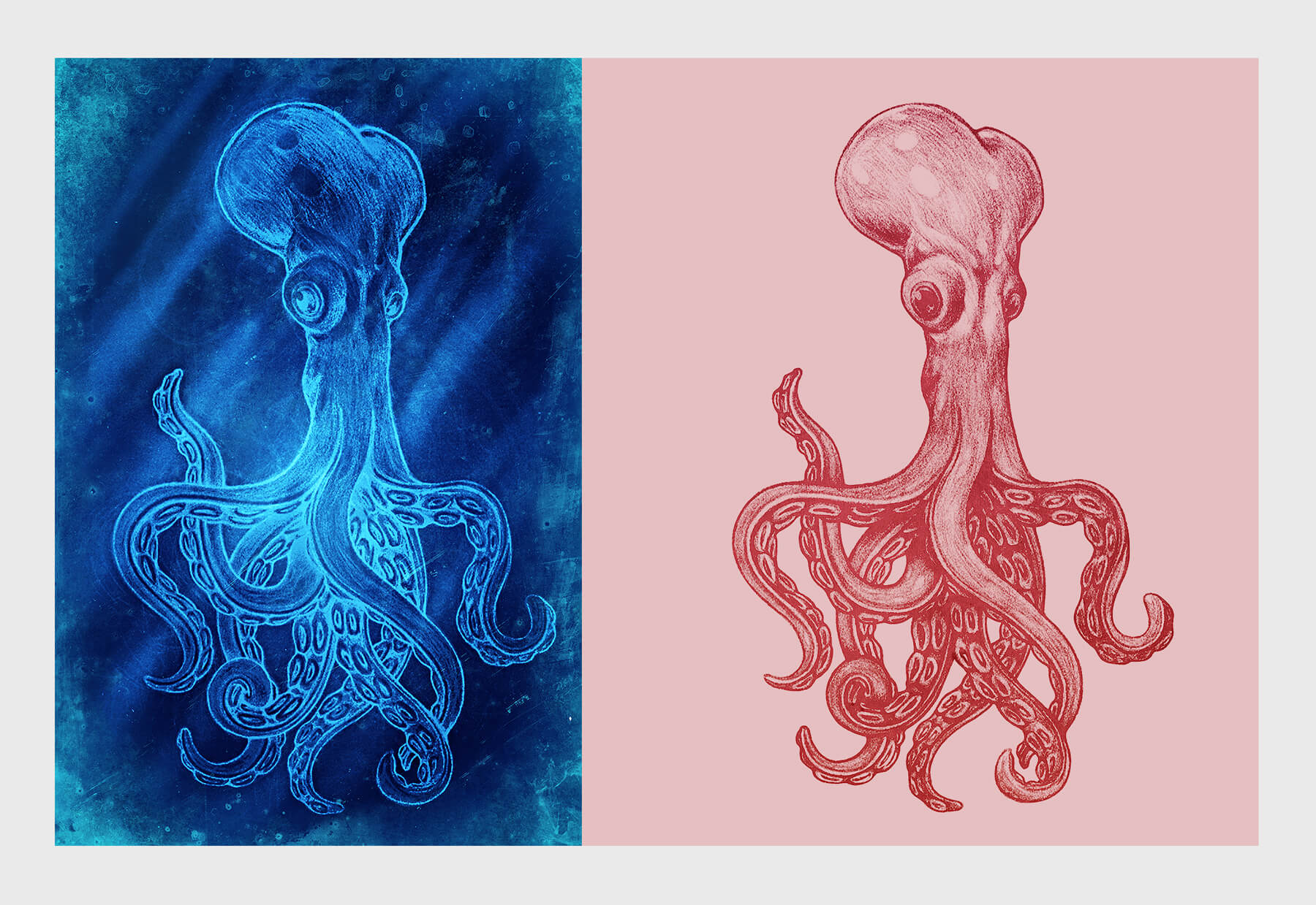 Octopus-formatted-2